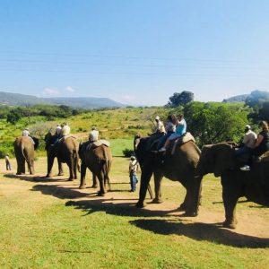natuurlijk landschap zuid afrika